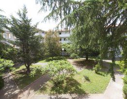 Apartment VI